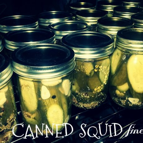 cannedsquid-spicydills_resized
